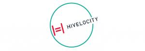 Hivelocity case study