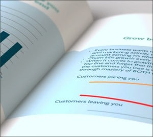 cleaning-ebook-preview2