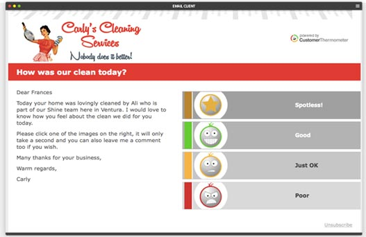 cleaning-satisfaction-survey