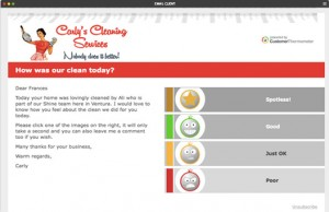 cleaning-satisfaction-survey1