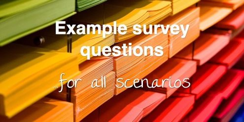 Example survey questions