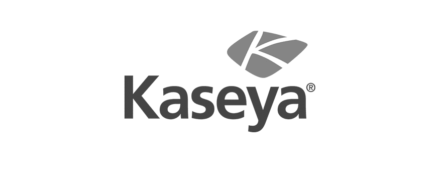 kaseya survey