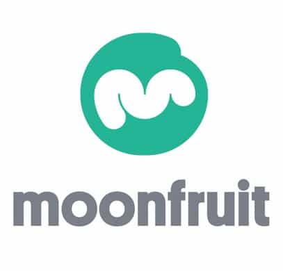 moonfruit-it-customer-satisfaction-survey