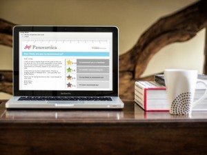 Laptop Screen Measuring NPS
