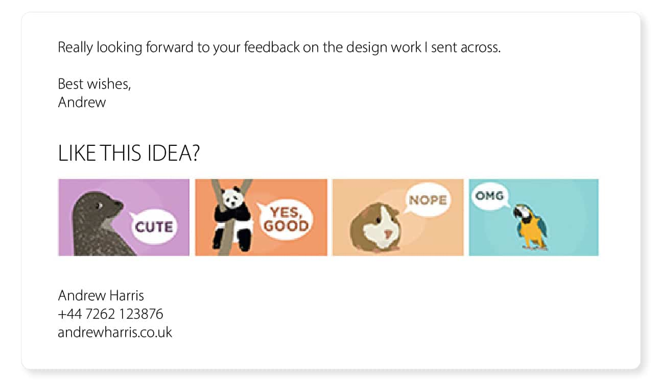 cool email signature ideas feedback reaction