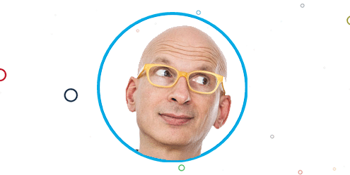 Seth Godin Surveys